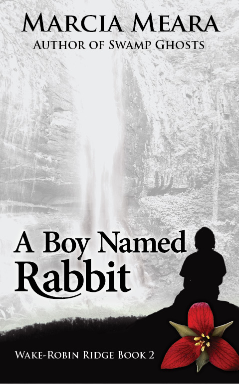 A Boy Named Rabbit_kindle cover1