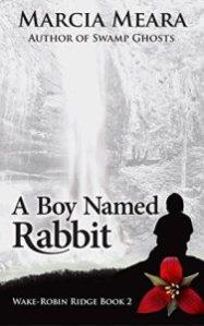 A boy named Rabbit