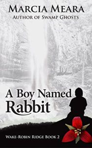 A boy named Rabbit