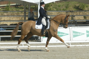 Here's me, competing on the International circuit, in Spain, 8 years ago.