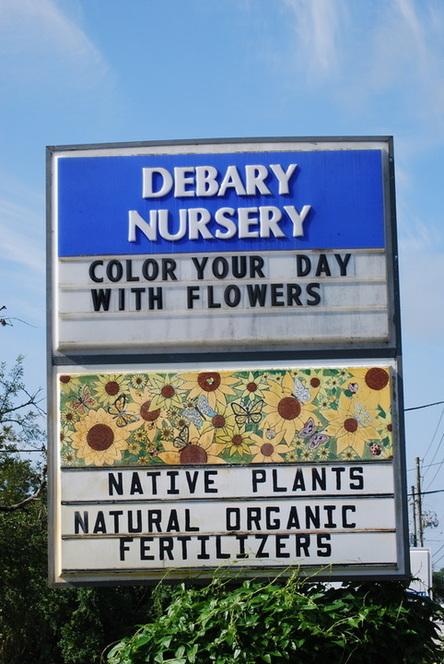 DeBaryNursery