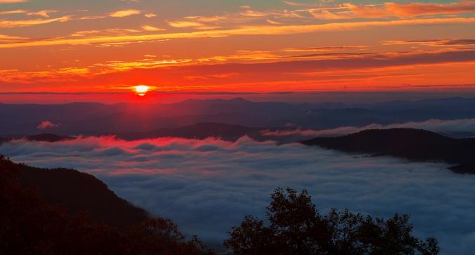 Foggy-Daybreak