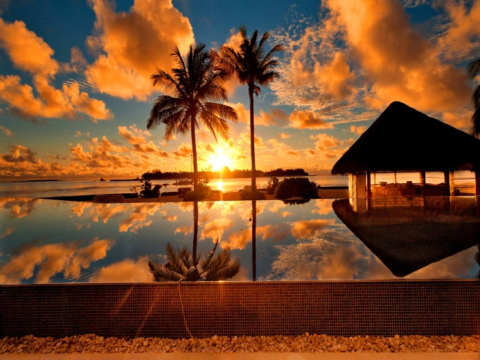 tropical-sunrise-wallpaper-wallpaper-2