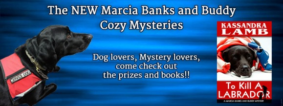 Kass_Marcia_Buddy FINAL BANNER
