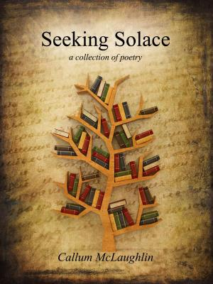 Seeking Solace (ebook, ad version)