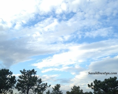 blue-sky-clouds-and-trees-sig